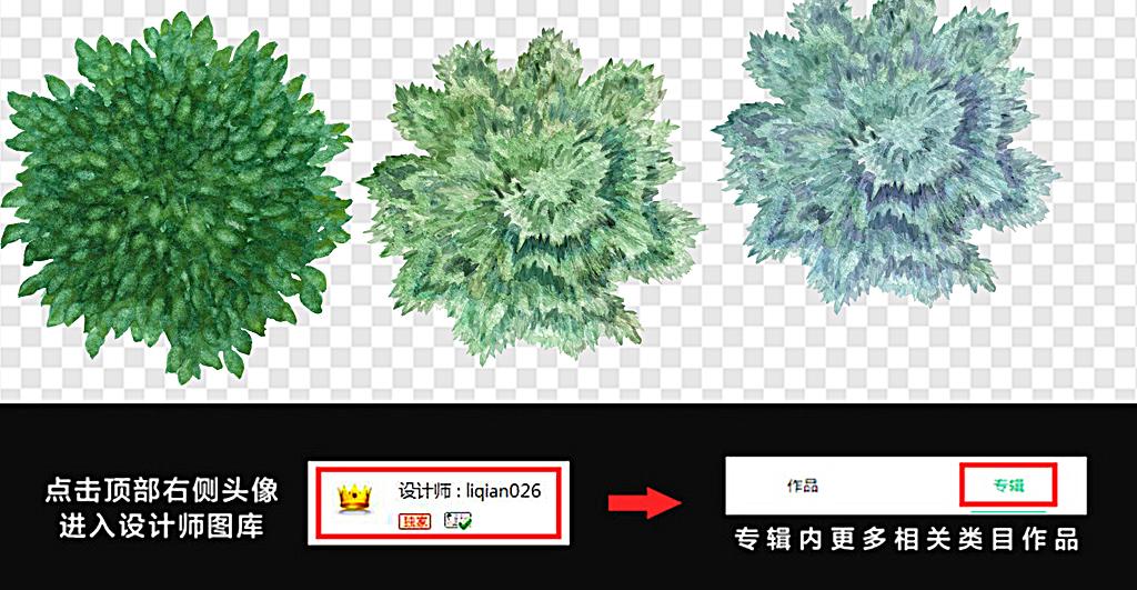 设计元素 自然素材 树叶 > 树木彩色树木图片俯视树木图片  素材图片