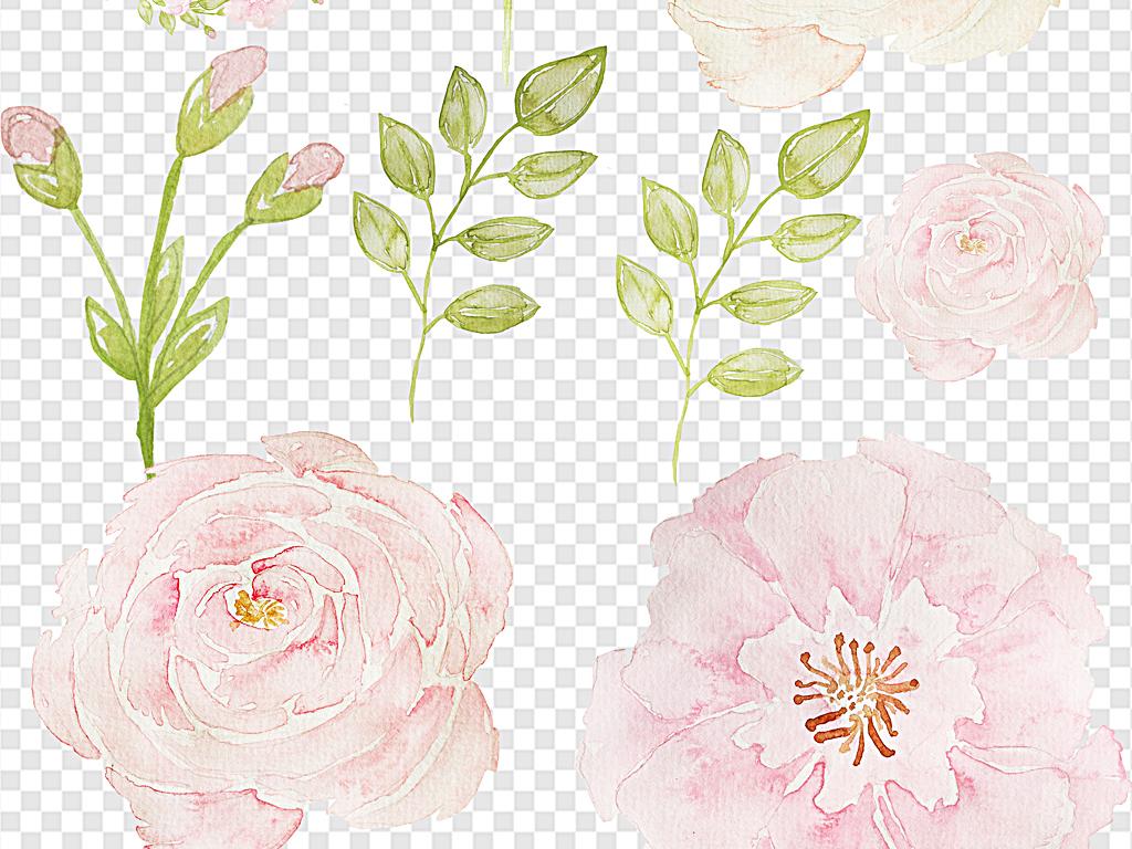 水彩手绘花朵水彩花朵图片淡雅花朵