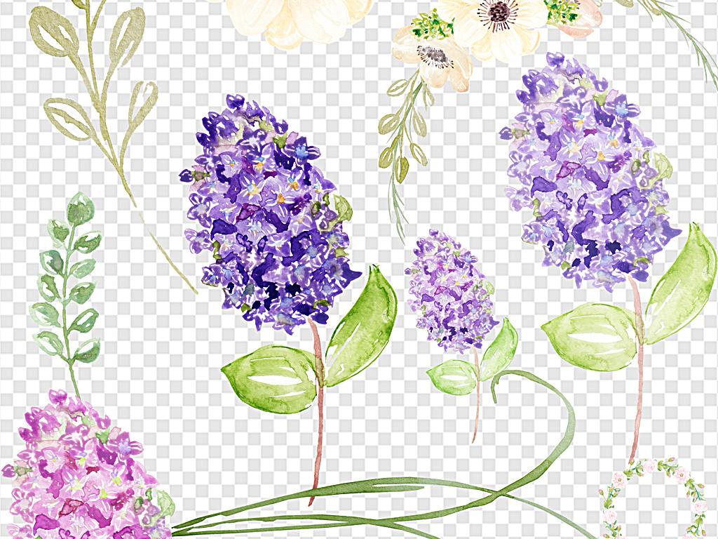 水彩花卉手绘素材手绘元素