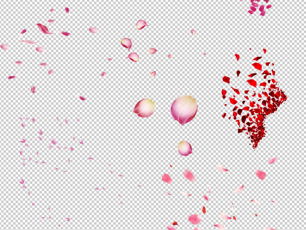 单片花瓣矢量图