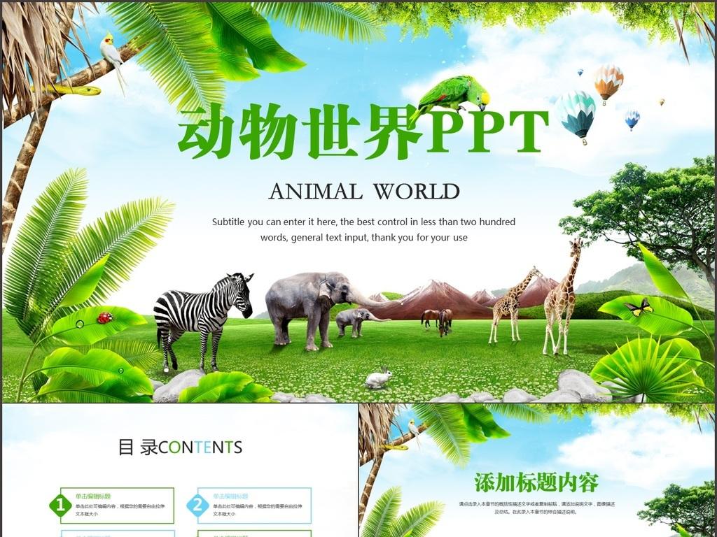唯美动物世界动物园观赏ppt模板