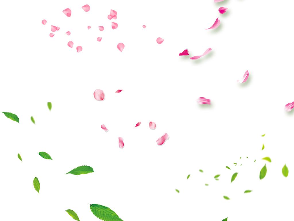 树叶花瓣飘落素材png装饰浪漫花朵玫瑰图片