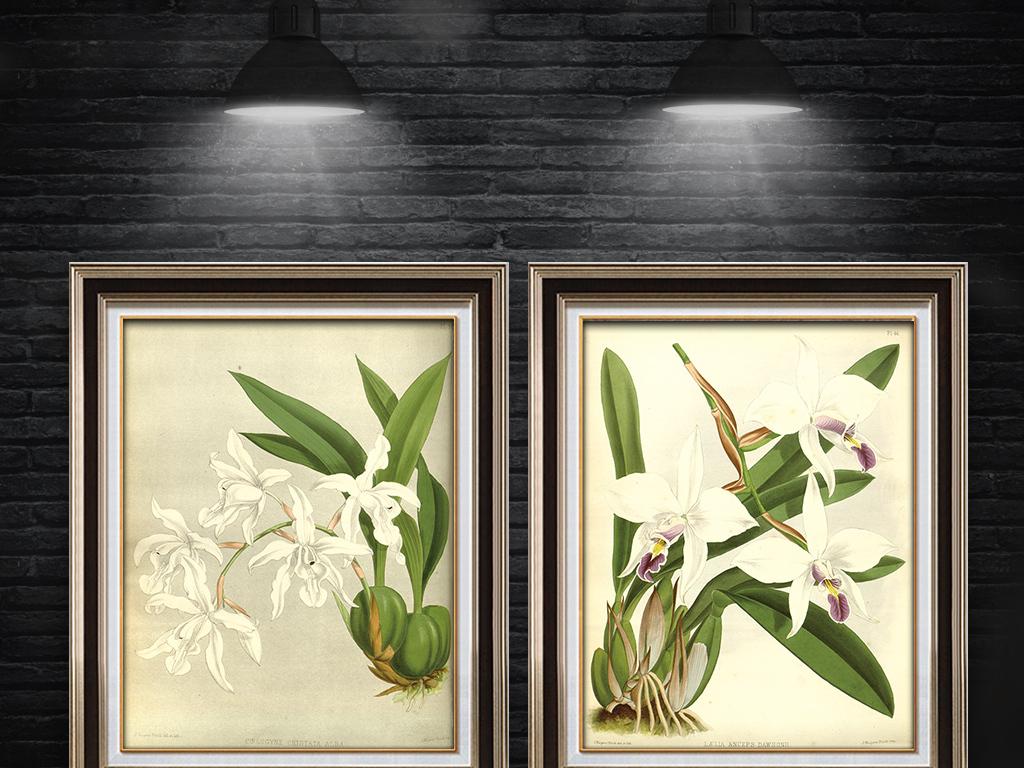 美式花卉百合花白色手绘百合花装饰画美式白色百合花欧美风格装饰画