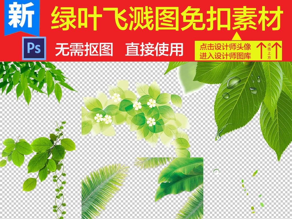 绿叶植物绿叶背景素材小清新绿叶边框