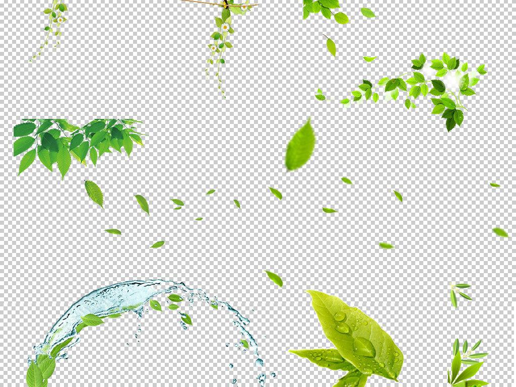 绿叶植物绿叶背景素材小清新绿叶