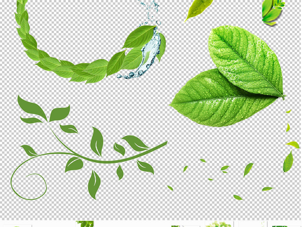 素材小清新绿叶边框手绘绿叶漂浮的绿叶卡通绿叶飞舞树叶树叶绿树茶叶