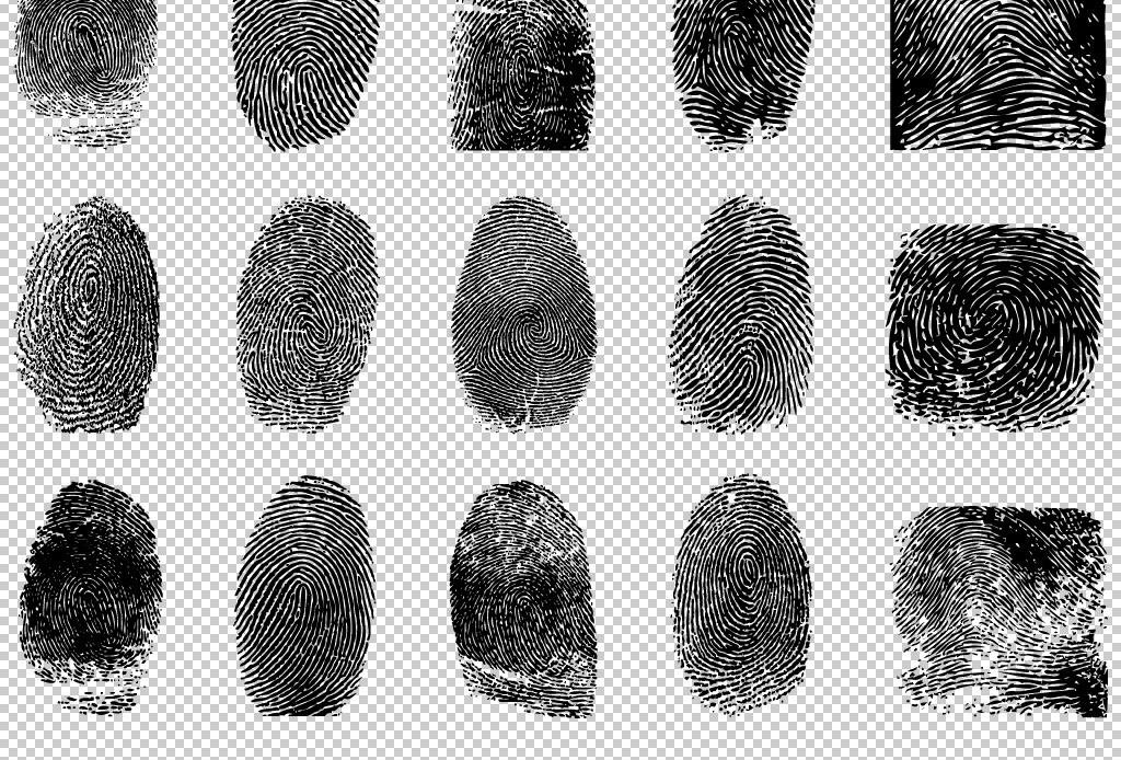 人物手指指纹png图片
