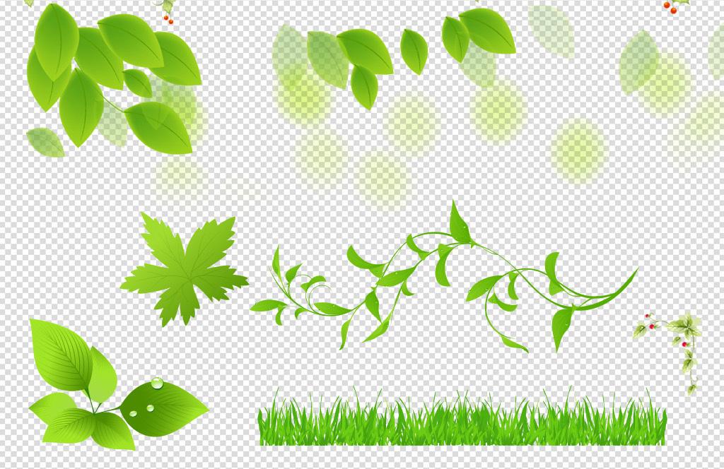 绿色树叶树藤装饰绿叶花朵png素材图片