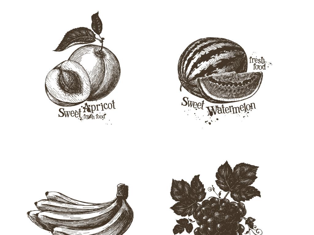 设计元素 自然素材 其他 > 果蔬素描蔬菜水果手绘写生矢量图案