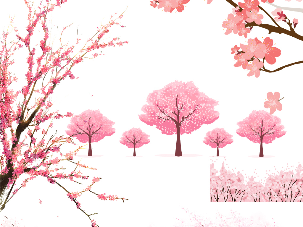 手绘樱花樱花节四月樱花樱花花瓣樱花飘落