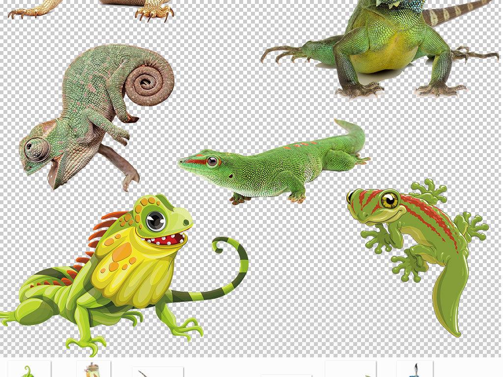 可爱蜥蜴图片蜥蜴头像手绘蜥蜴
