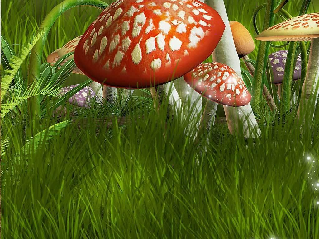 海绵纸手工制作蘑菇主题墙