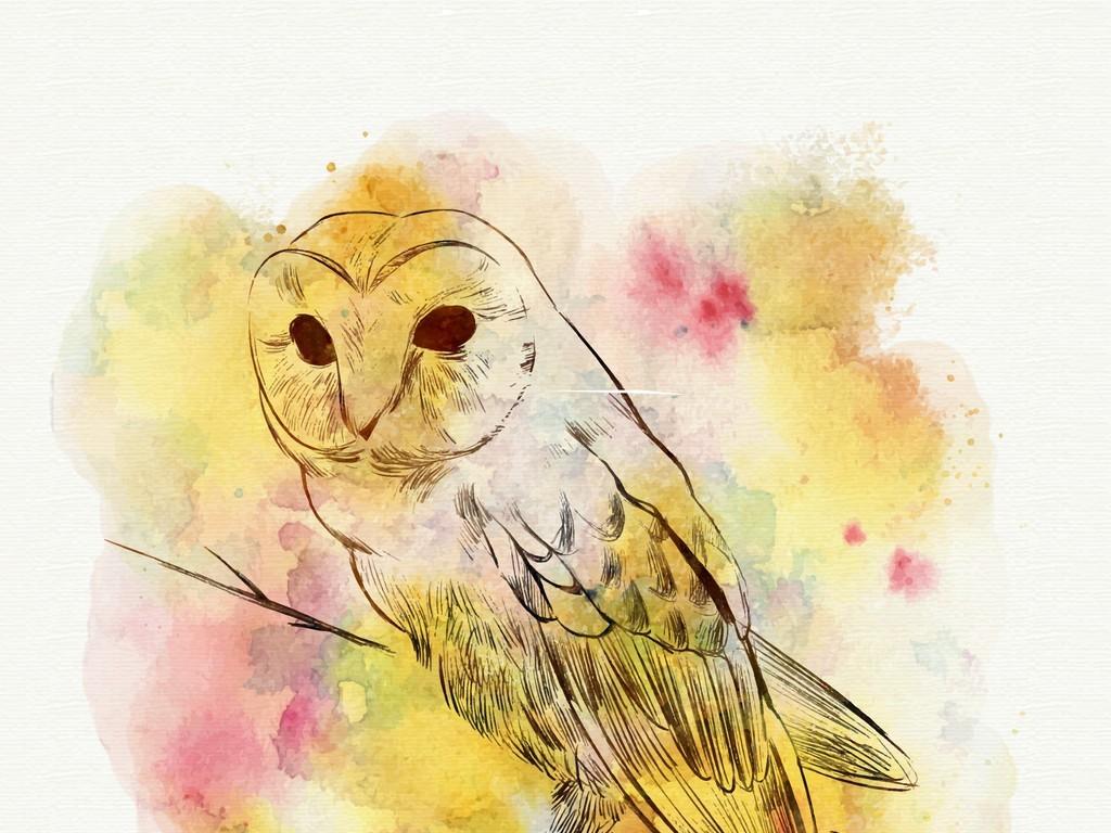 手绘水彩动物装饰画猫头鹰