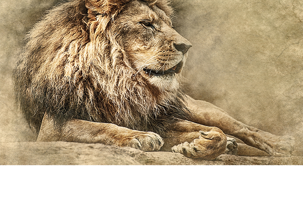 欧式复古手绘狮子