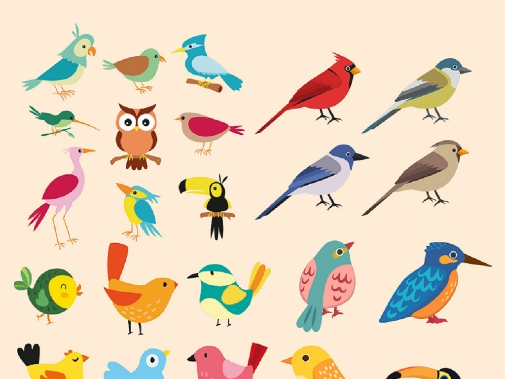 创意手绘工笔猫头鹰飞翔鹦鹉啄木鸟鸵鸟动物园