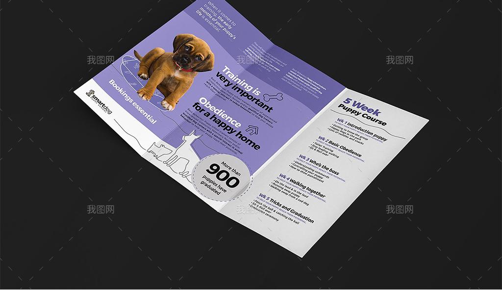 宠物医院学校宣传海报三折页宣传单名片卡片