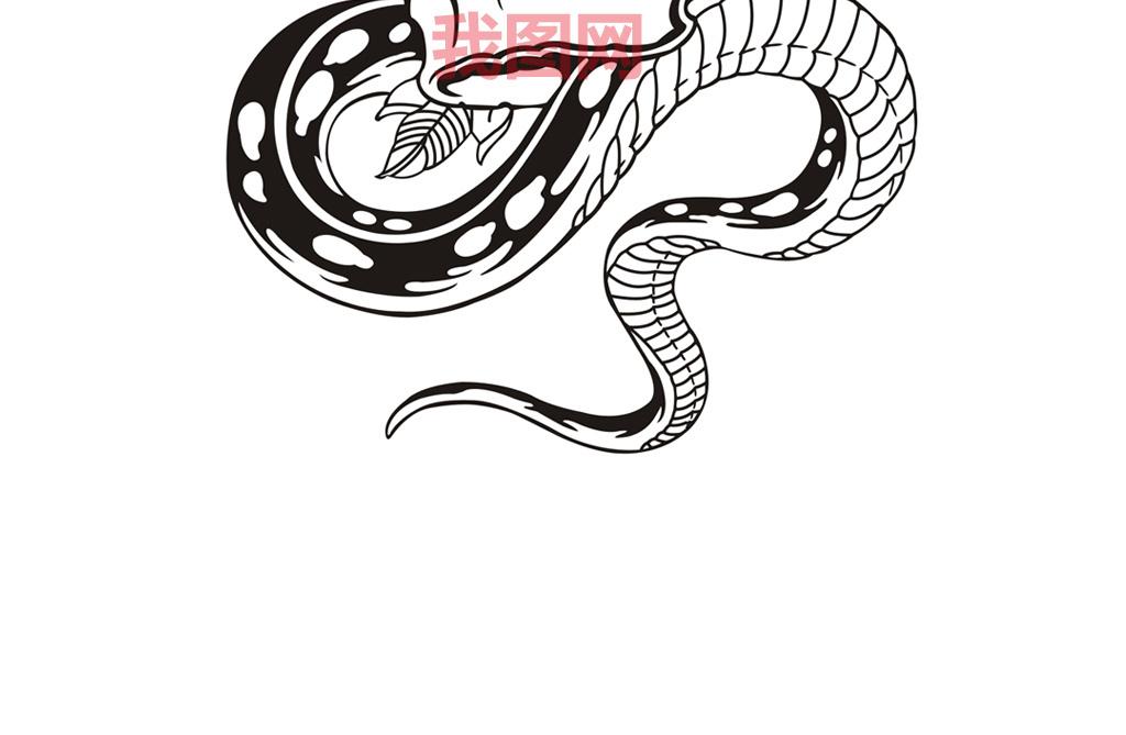 骷髅印花矢量纹身图案龙纹身图案大全火焰