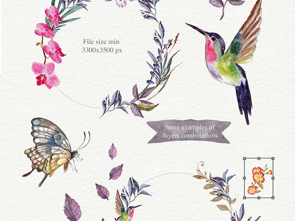 手绘水彩插画水彩手绘花朵花篮素材包花卉水彩鸟语花香水彩花卉花边