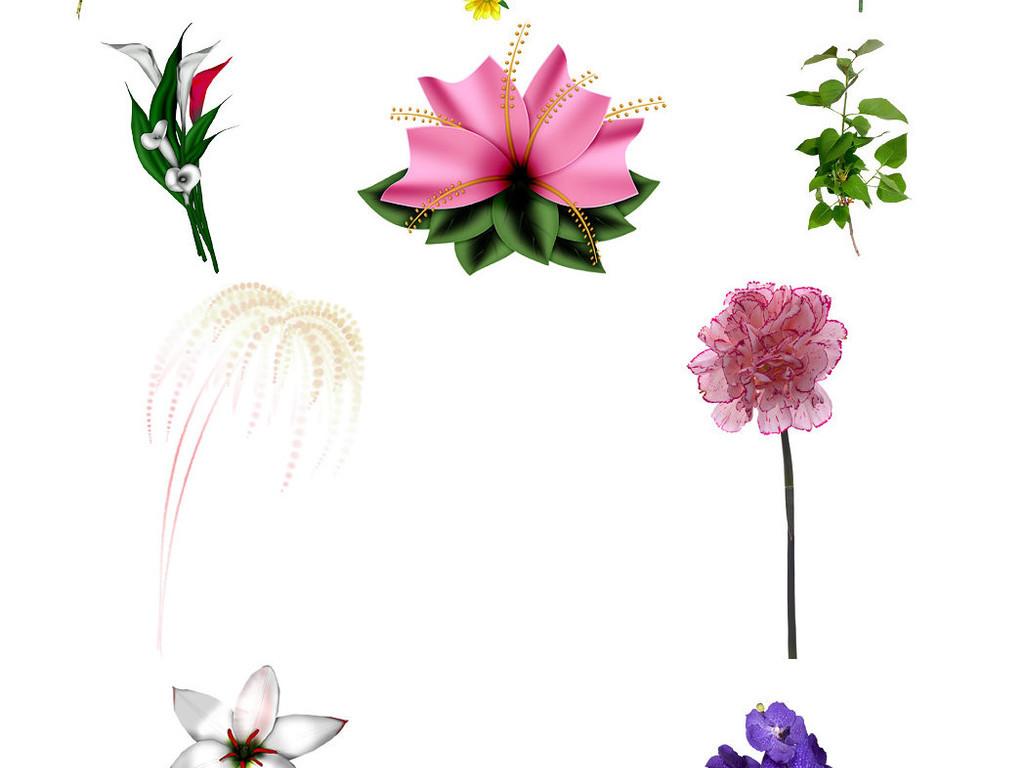 各种花朵花卉免抠素材png2