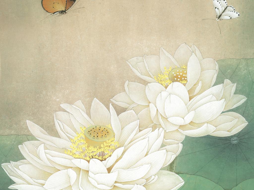 中式手绘工笔荷花蝴蝶中式玄关过道背景墙