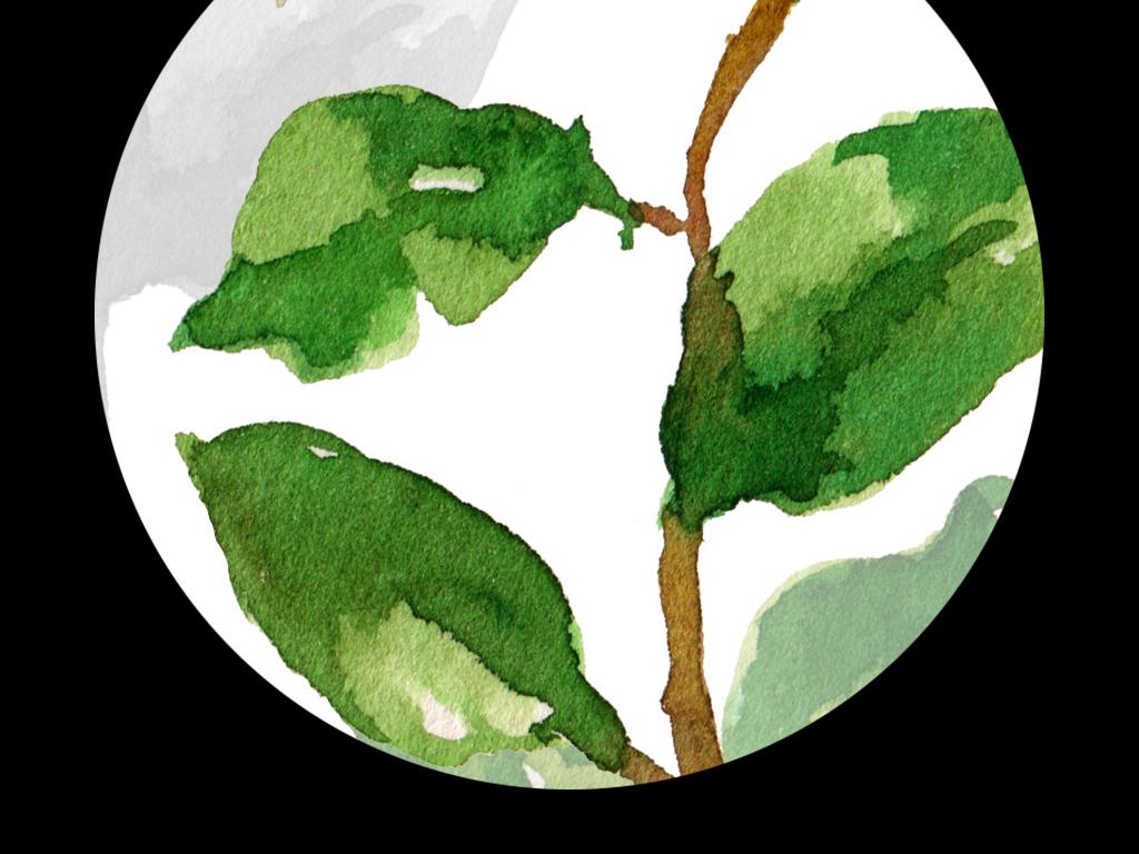 高清简约小清新北欧风格植物叶子装饰画