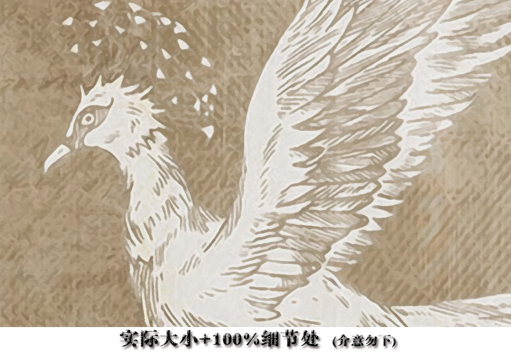 复古怀旧手绘白鸽装饰背景墙图片