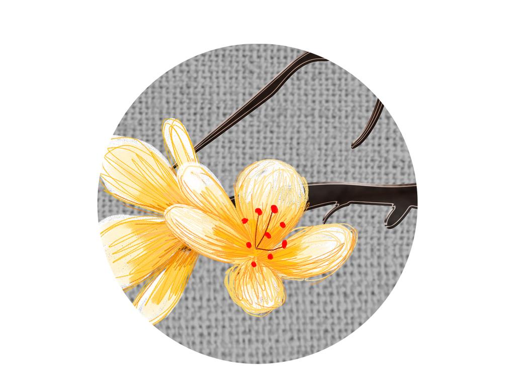 新中式中国风手绘工笔花鸟梨花背景墙装饰画