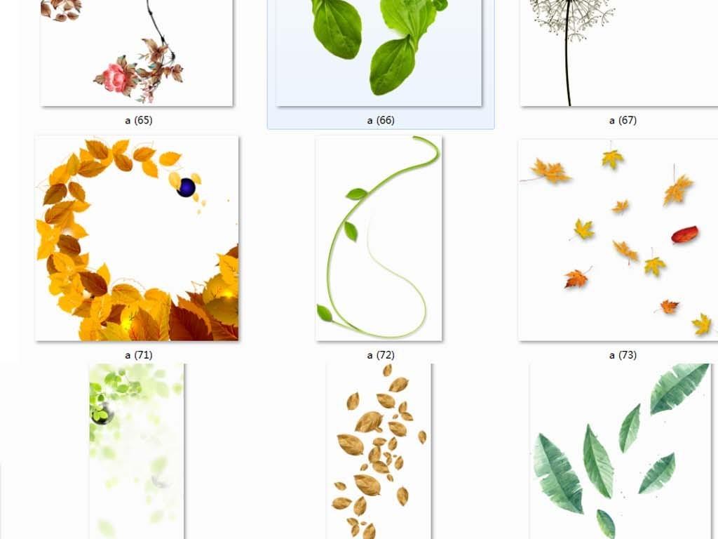 png)树叶矢量图                                  绿色树叶树叶边框