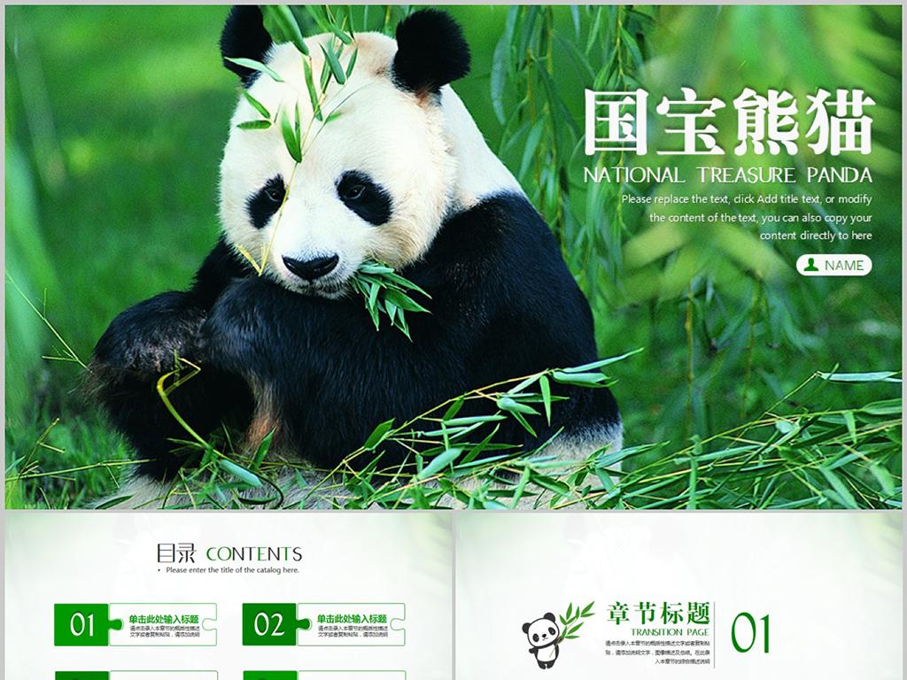 保护动物国宝熊猫吃竹子动态ppt模板