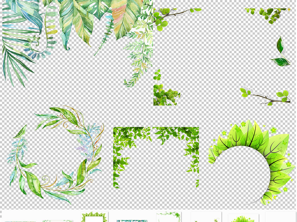 卡通树叶椰子树叶主题边框手绘
