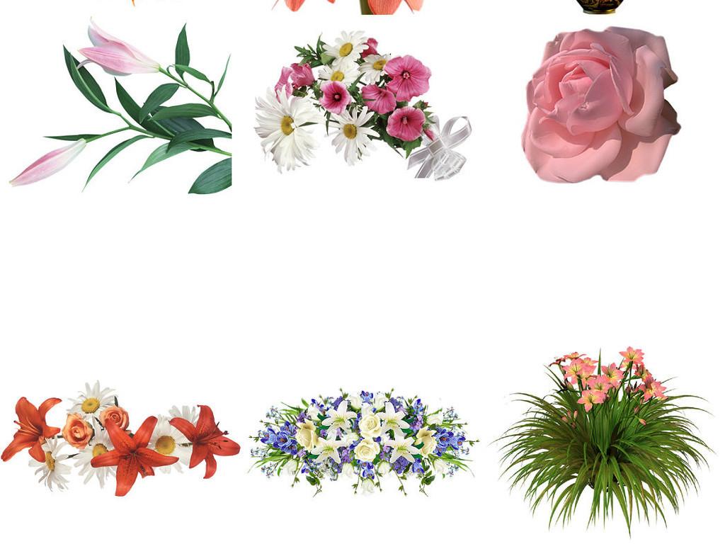 手绘3d立体鲜花海报设计免抠素材打包2