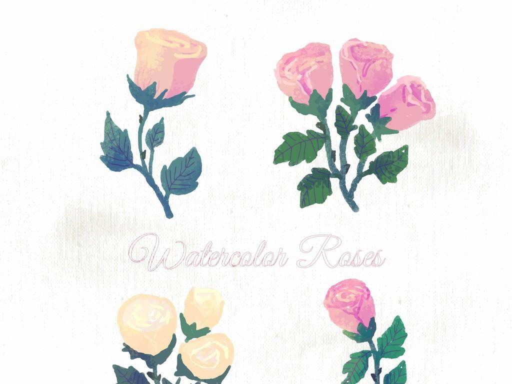 手绘植物花卉玫瑰花