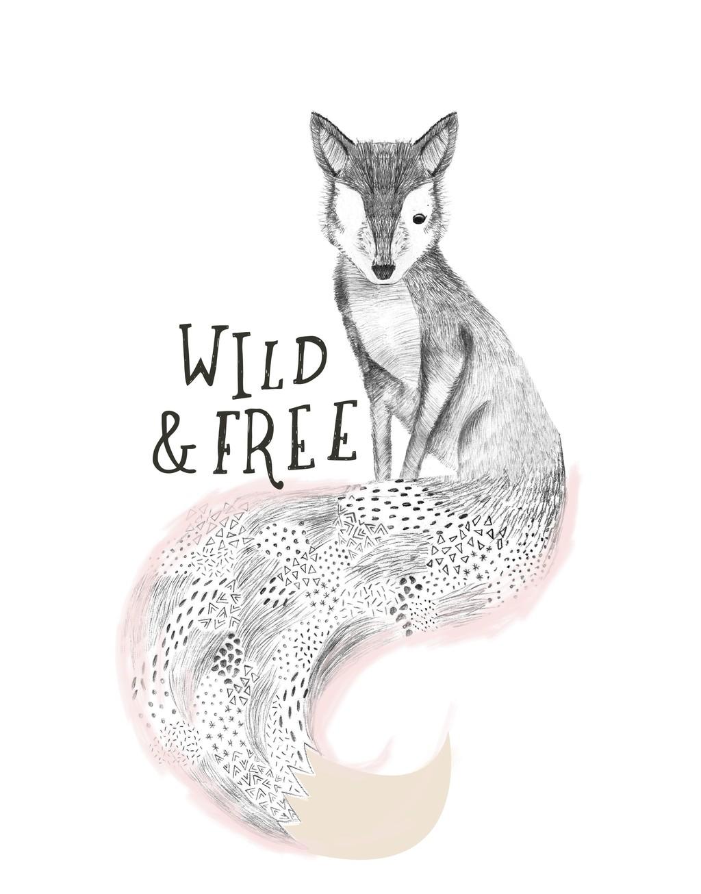 手绘卡通动物素描狐狸