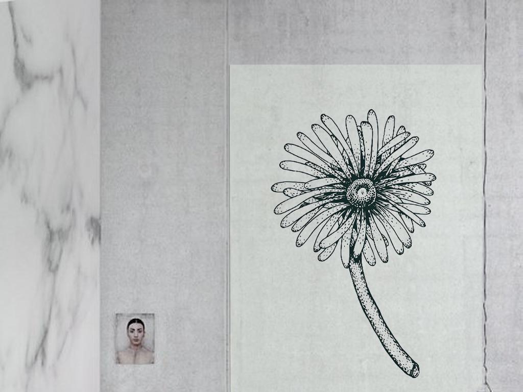 现代简约手绘抽象蒲公英图案北欧装饰画