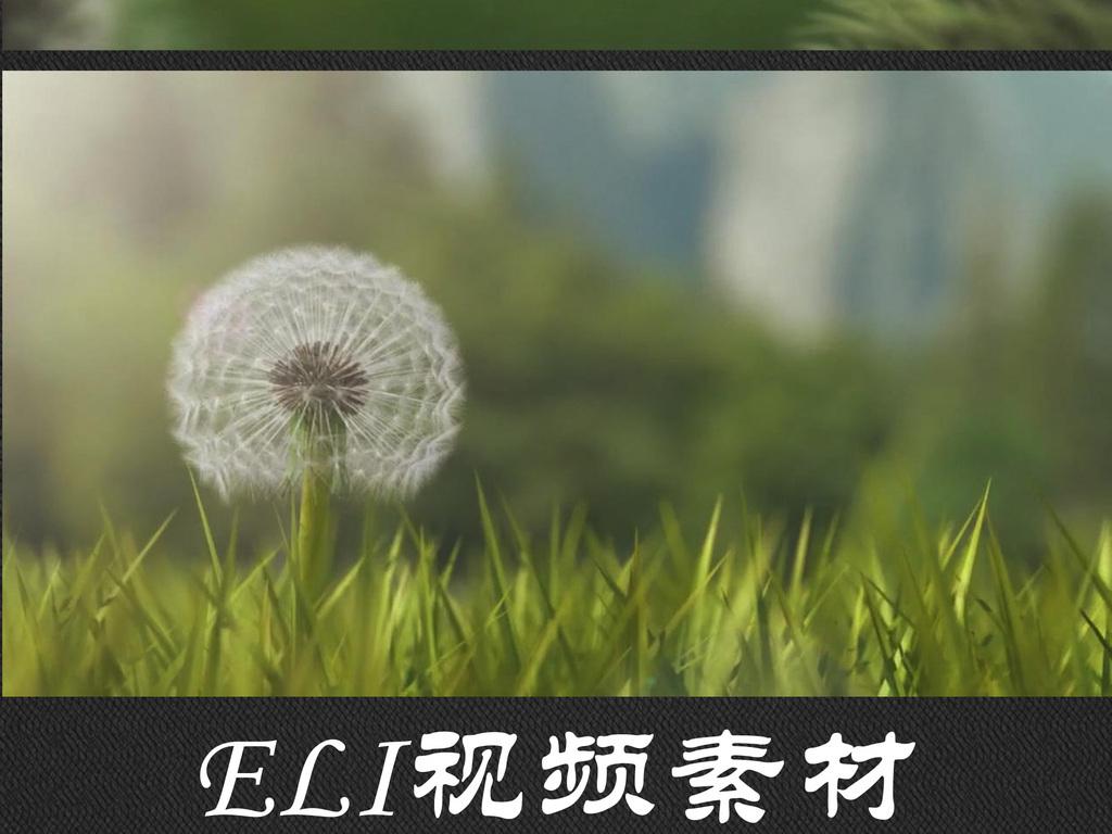 风吹蒲公英飞舞视频(图片编号:16467995)_自然世界_我