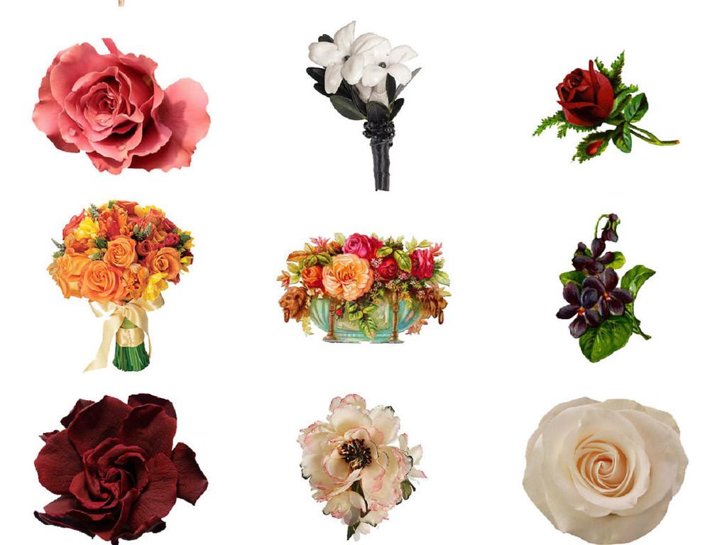 多种精美手绘水彩花朵免抠素材系列4