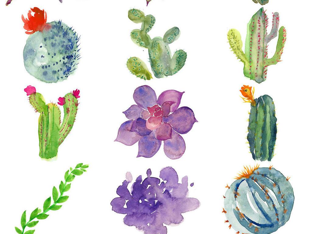 多款唯美手绘水彩植物鲜花设计素材png1