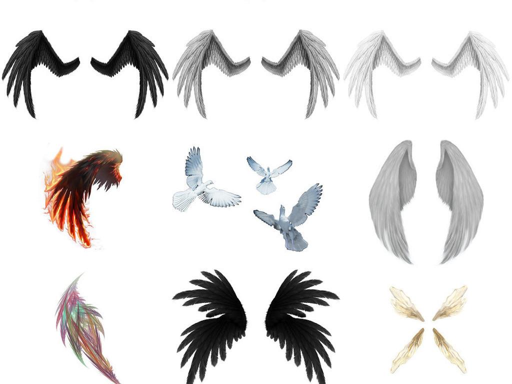 翅膀翼各种翅膀海报设计素材4