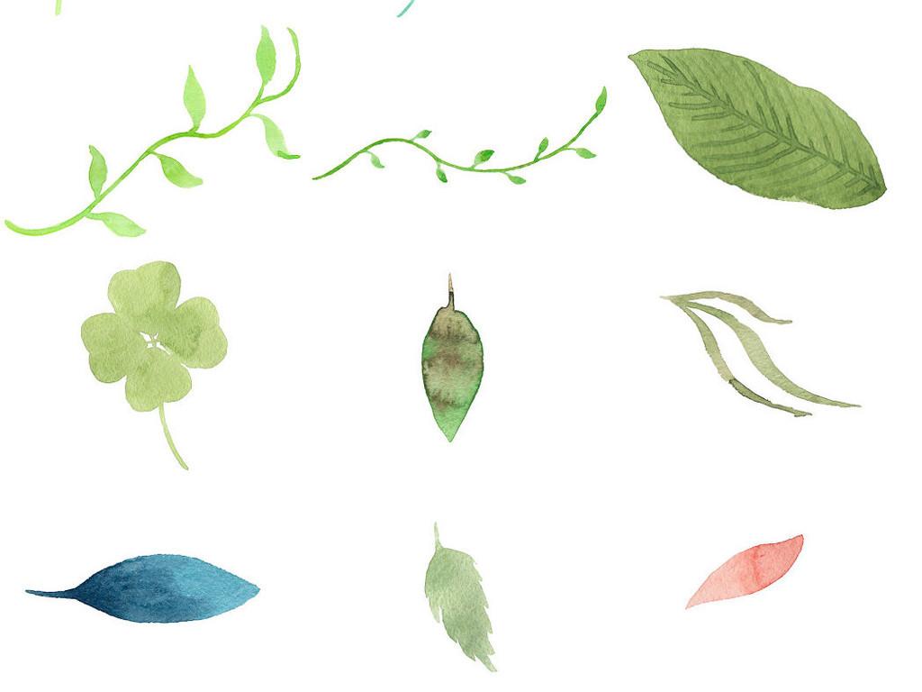 手绘水彩树叶树藤1
