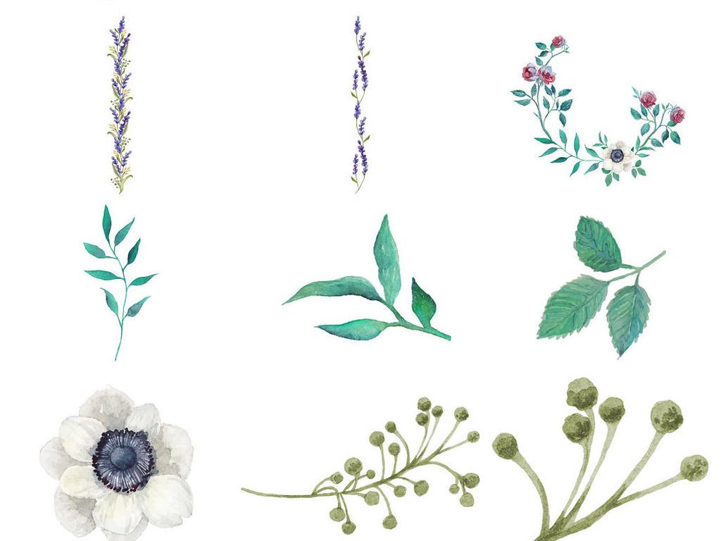 精美手绘水彩花叶花枝免抠png素材1