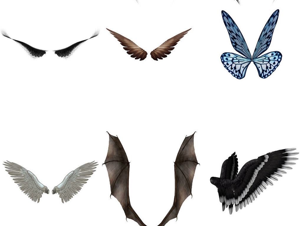 翼蝴蝶翅膀精灵翅膀免抠png素材2
