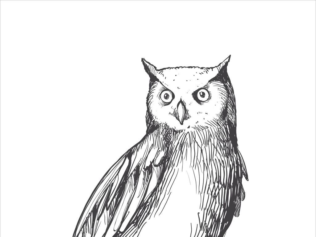 设计作品简介: 手绘素描猫头鹰插画 矢量图, cmyk格式高清大图,使用
