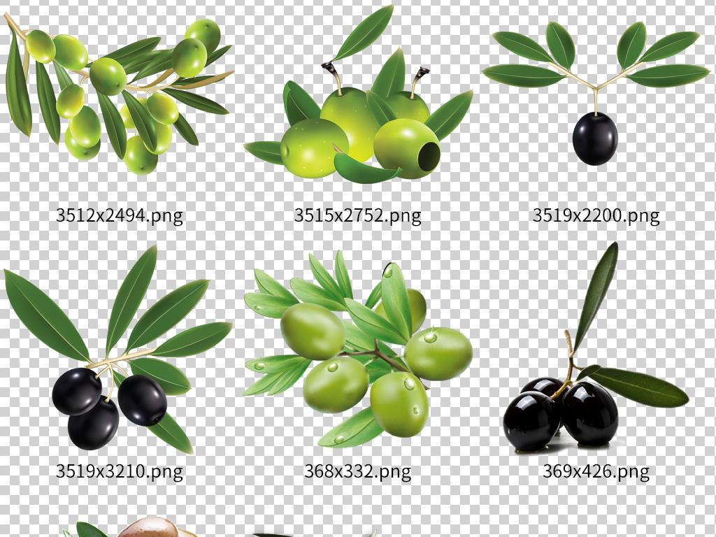手绘新鲜橄榄果蔬菜设计素材