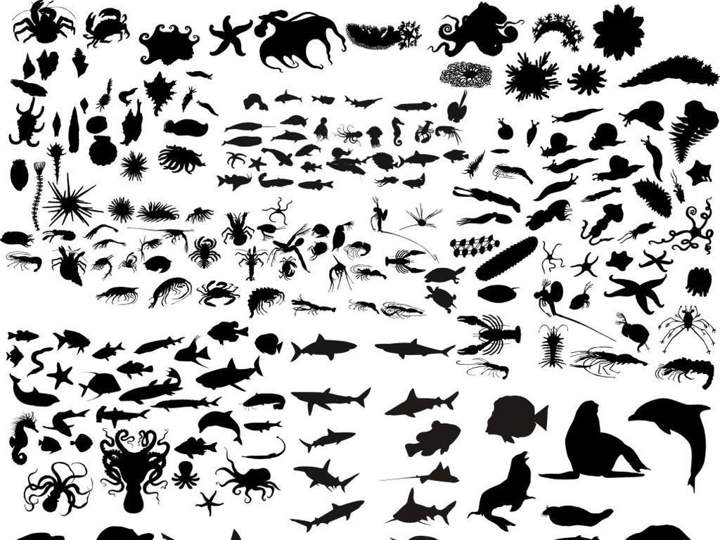 海洋生物动物鱼类剪影