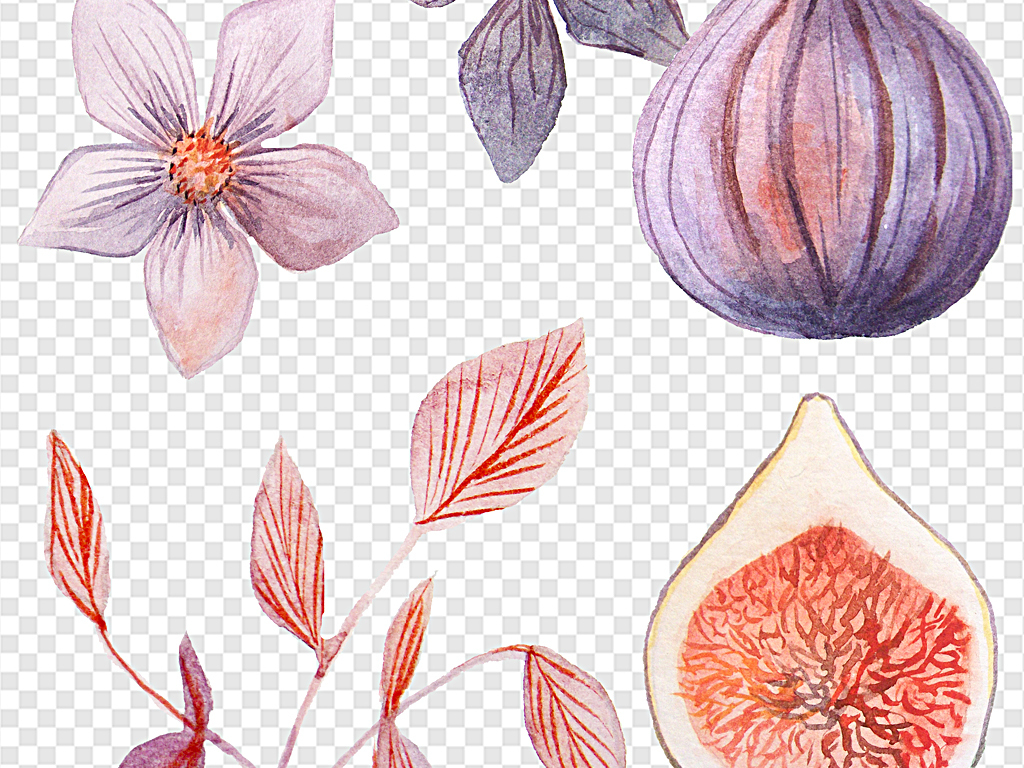 手绘树叶素材各种树叶树叶底纹花朵水彩紫色花朵水彩