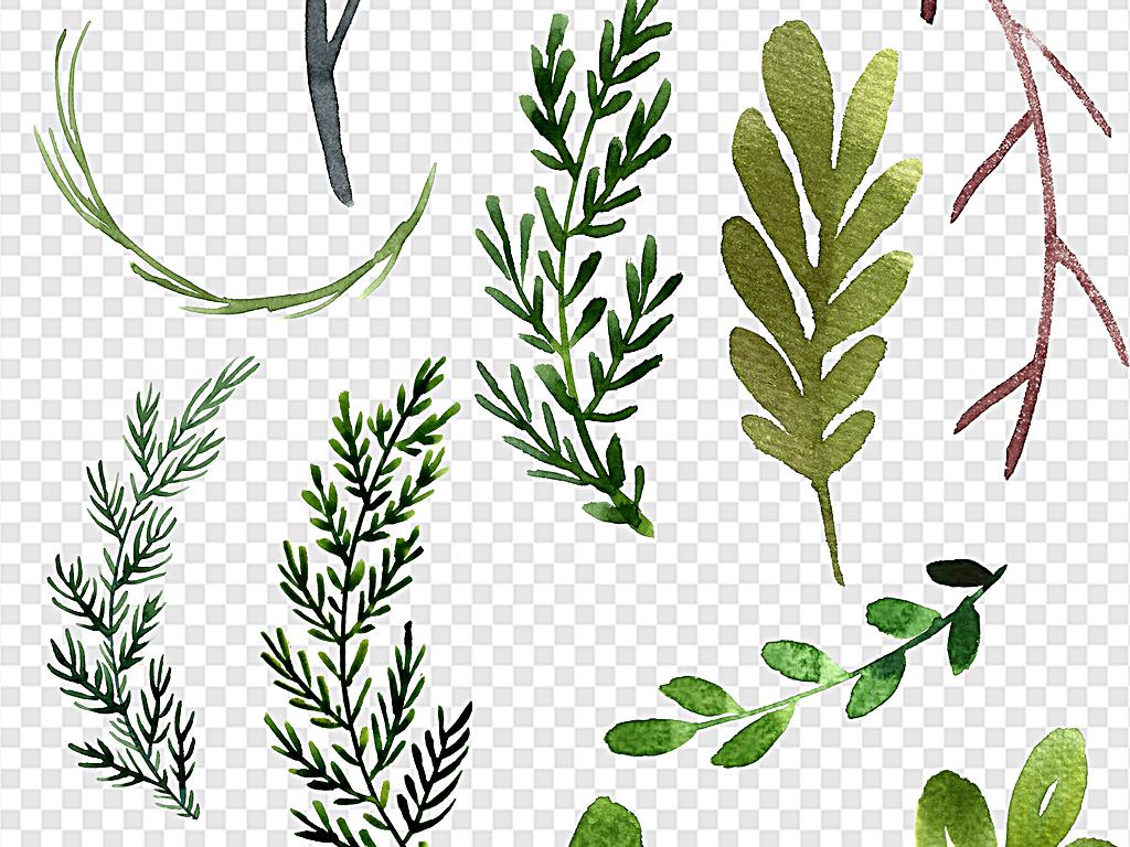 植物素材树叶椰子树手绘树叶手绘卡通卡通手绘卡通