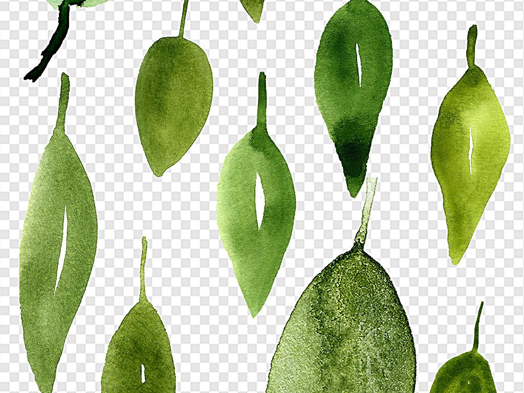卡通树叶水彩树叶