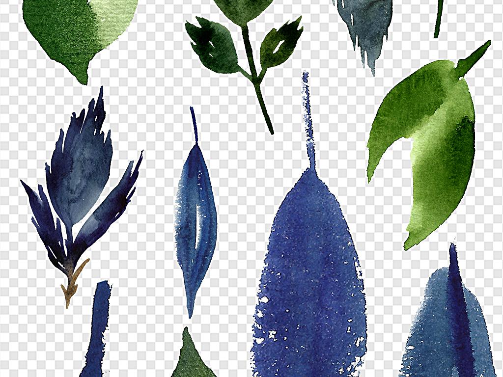 素材边框手绘边框树叶手绘树叶素材各种树叶树叶水彩