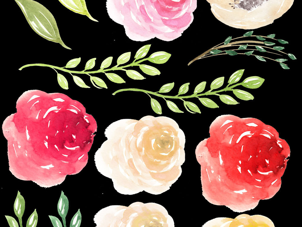 手绘花卉素材玫瑰花背景玫瑰花图片蓝色玫瑰花图片红玫瑰花玫瑰花高清