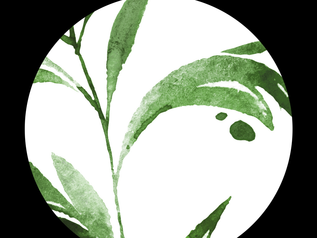 高清简约小清新北欧风格植物叶子装饰画图片